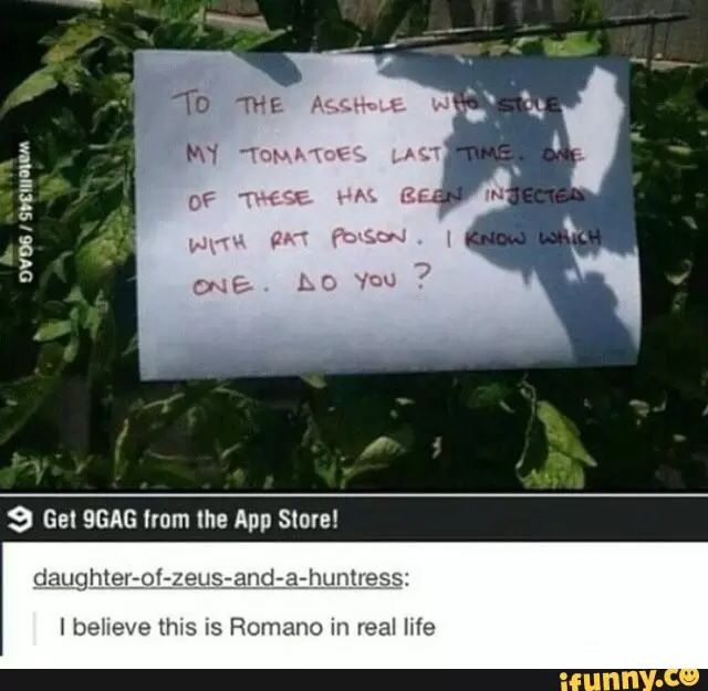 I feel your pain Romano... At least they weren't oranges-- and the thieves didn't leave the peels on the ground!!!!