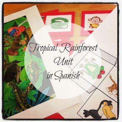 Debbie's Spanish Learning: Rainforest Unit in Spanish {Free Printables}