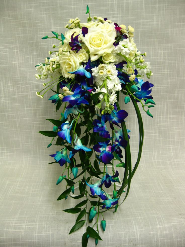 17 Best Images About Blue Dendrobium Orchids On Pinterest Floating Candles Purple Satin And