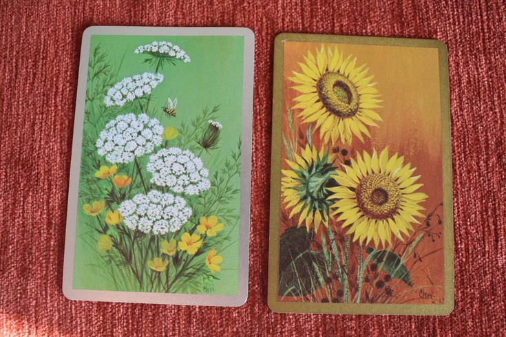 Playing cards used Congress US Playing Card Co vintage floral 2 x 54 cards with cel-u-tone finish Sunflowers and Wild flowers with Bee by NavigateTimeVintage on Etsy