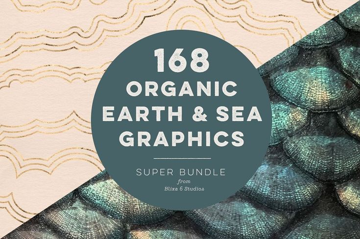 168 Organic Earth & Sea Graphics - Patterns