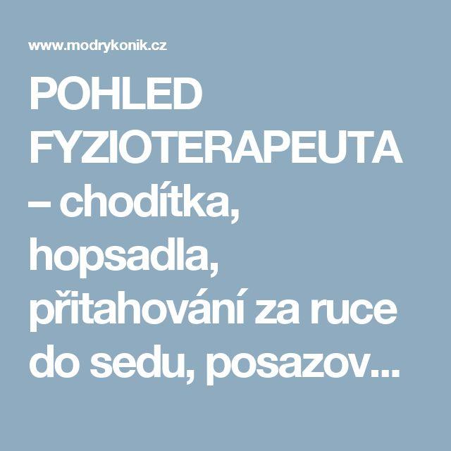 POHLED FYZIOTERAPEUTA – chodítka, hopsadla, přitahování za ruce do sedu, posazování, vodění za ruce - Článek uživatelky eficenka