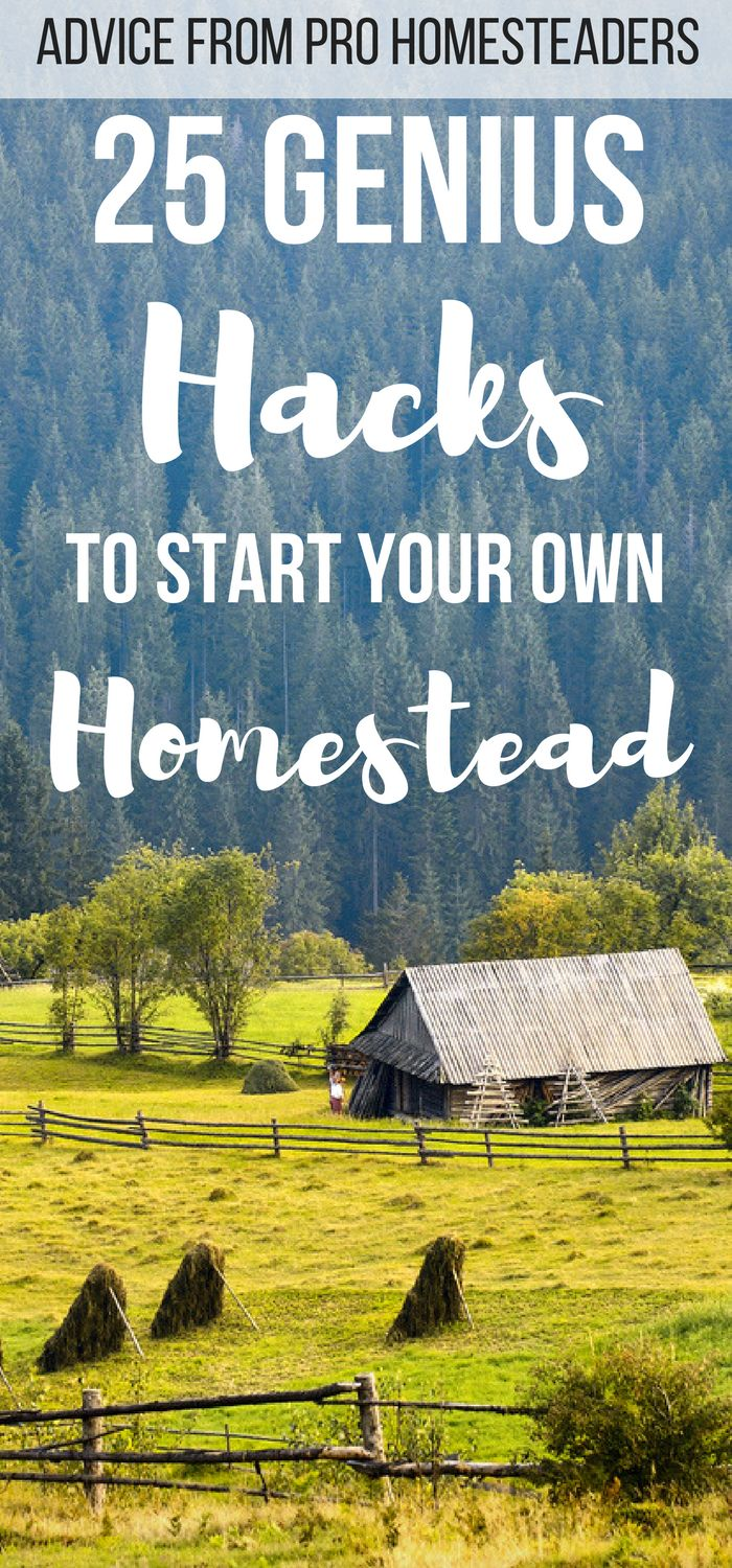 Homesteading for beginners is easy with these 25 homesteading ideas from pro homesteaders. You can start today using these simple skills and hacks!