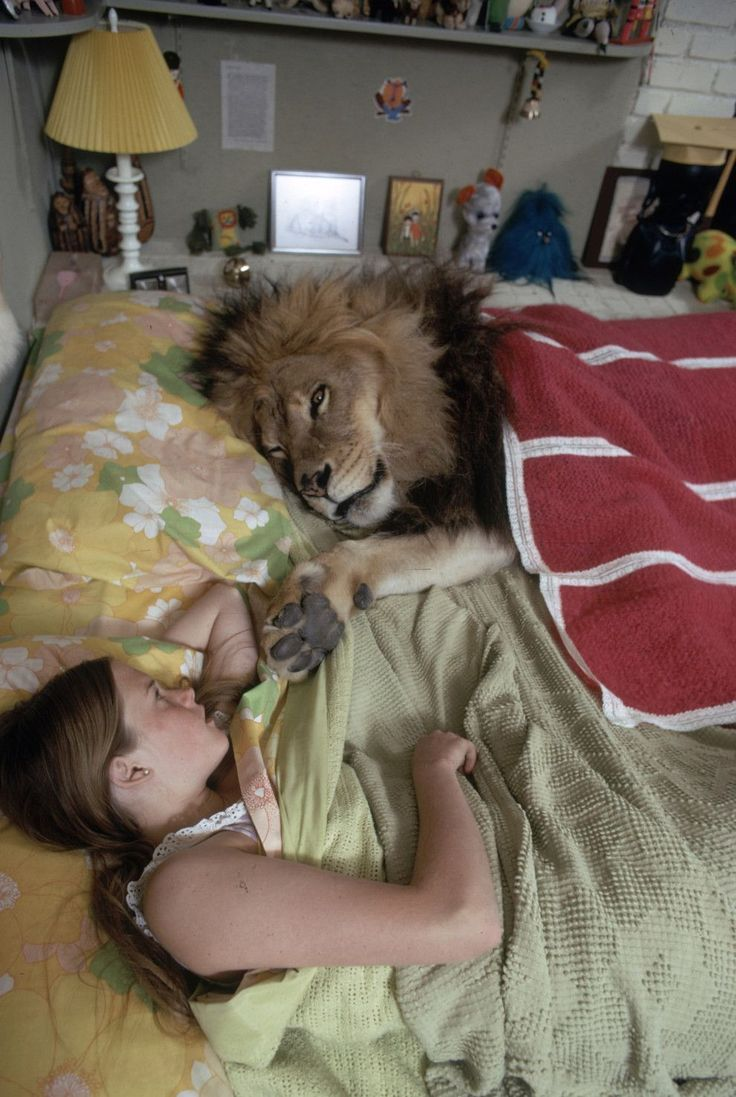 """13 yr old Melanie Griffith with her pet Lion """"Neil"""" in 1971"""