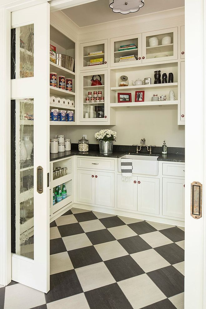 organized walk in pantry with a sink