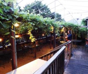 Unique Cincinnati experiences: the Caribbean butterfly exhibit at the Krohn Conservatory and the German restaurant, Mecklenburg beer garden.