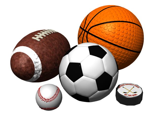 Best Sport BusinessManagement Majors Images On