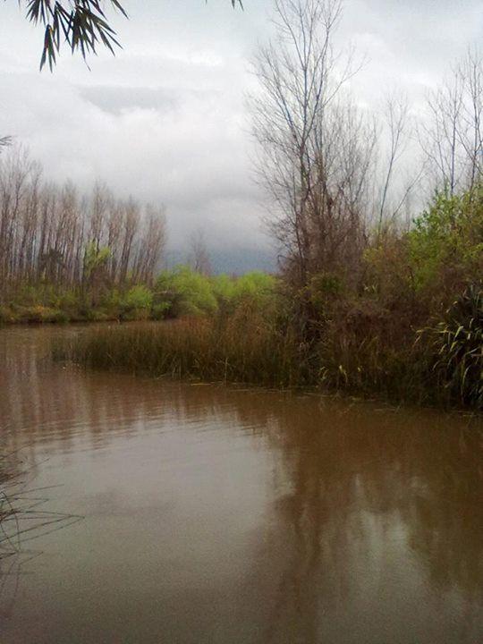 Adriana Vallejo: Canal Arana