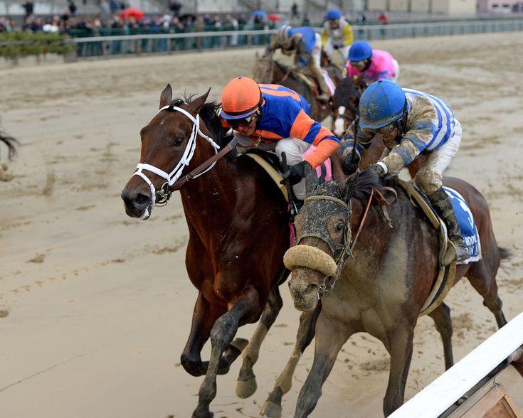 memorial day horse race