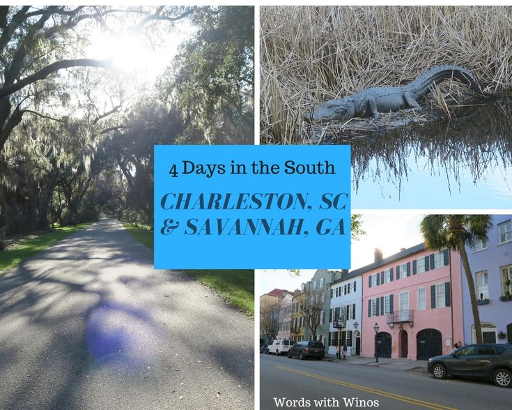 Check out our new podcast and blog post on a road trip through Charleston, South Carolina and Savannah, Georgia!