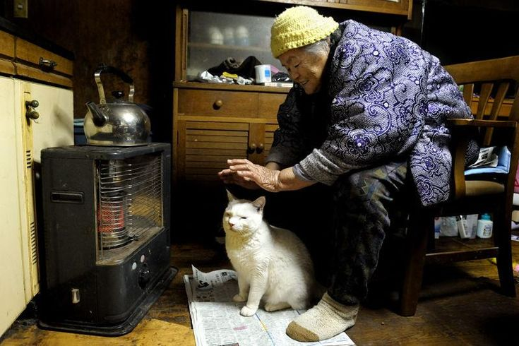 Miyoko Ihara has been taking photographs of her grandmother, Misao and her beloved cat Fukumaru since their relationship began in 2003. Their closeness has been captured through a series of lovely photographs. 11-17-12 / Miyoko Ihara