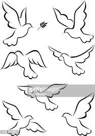 Resultado de imagem para birds sketch