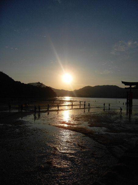 Miajima - tori à marée basse