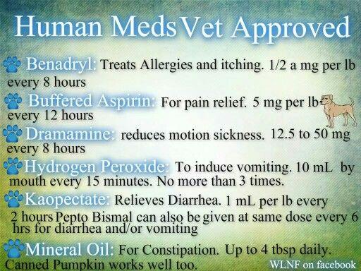 Vet aproved meds for dogs