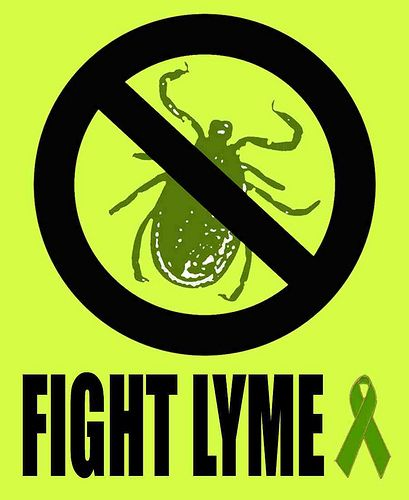 My Lyme Disease is not the IDSA Lyme Disease - Great experience of the life of someone with chronic lymes.