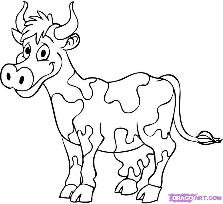 Cow Color Page Animal Coloring Pages