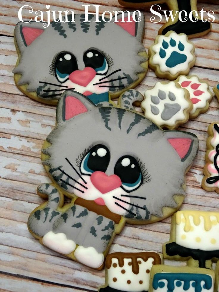 Tabby  Birthday and like OMG! get some yourself some pawtastic adorable cat apparel!