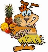 HEALTHY HOMEMADE DOG FOOD RECIPE -- Hawaiian Twist -- A canine combination of chicken, cottage cheese and sweet potato, along with added pineapple and mango. A twist of tropical flavors that will make your dog sit up and hula-la!