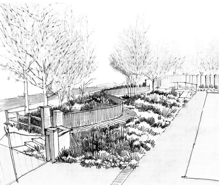 369 best sketches landscape images on pinterest for Garden design sketches