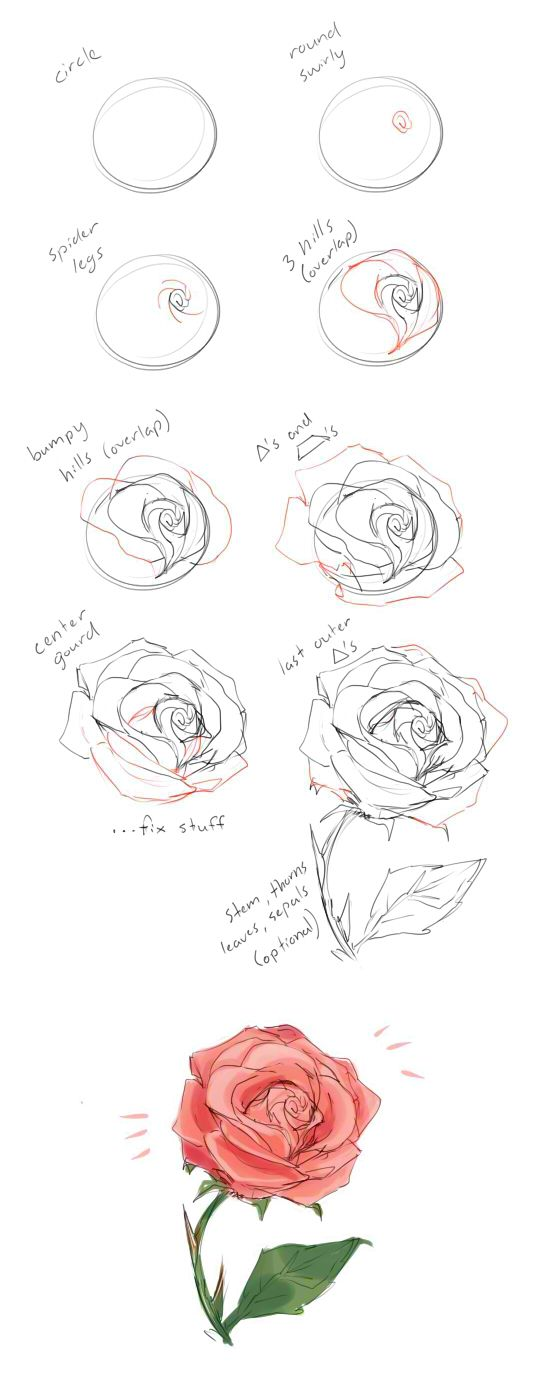 How to draw a rose tutorial  ...♥♥... by cherrimut on tumblr