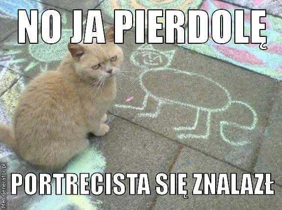 Kotek :)