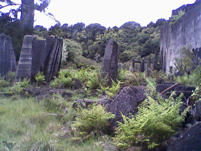 Ruins of cement works up near Warkworth, NZ