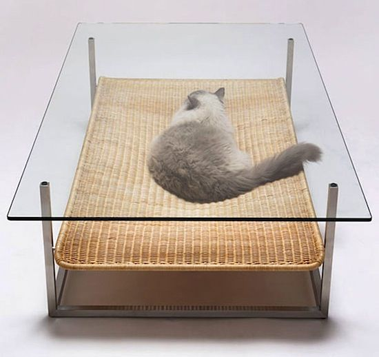 cat bed table If you have a cat, you should also own this table !.jpeg