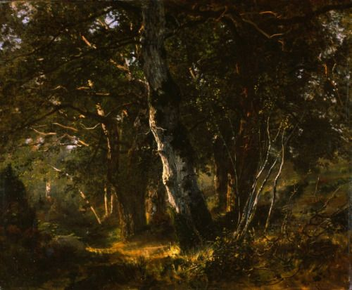 Forest of Fontainebleau, 1886, painted by Giuseppe Palizzi, Italian, 1812-1888. Palizzi lived on the edge of the forest, painted it and exhibited the painting at the Paris Salon. National Gallery of Modern and Contemporrary Art, Rome Italy.
