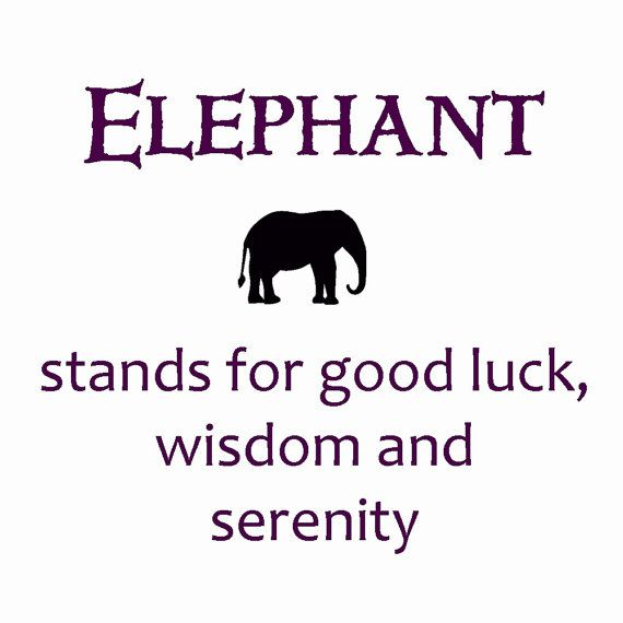 the meaning of an elephant #symbol #luck @Kaylyn Tanner Tanner Tanner Tanner Walton
