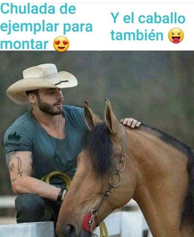 Pin De Almita Velazquez En Para Reir Meme Gracioso Memes Divertidos Imagenes Graciosas Whatsapp