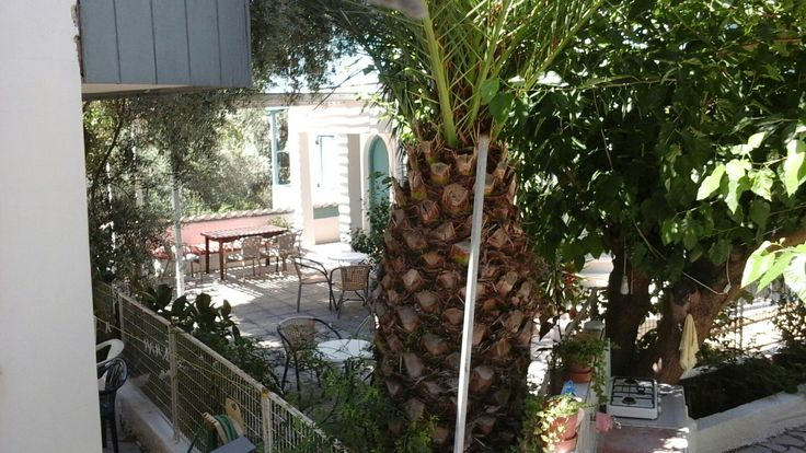 A short view from a back balcony in Agios Nikitas: Lefkada island