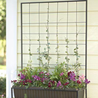 Cascade Planter Trellis Gardeners Supply Company Planter 640 x 480