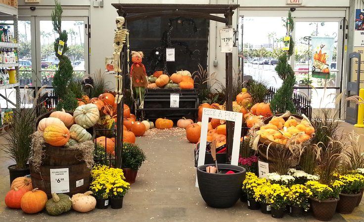 Lowe's Garden Center Pumpkin Display. Lowes