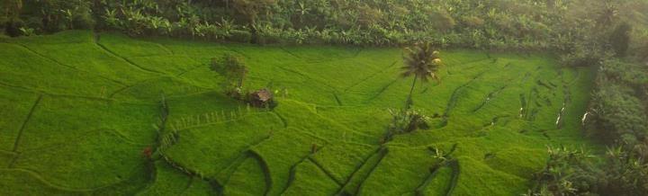 View from Argo Parahyangan. Yang ke Bandung naik travel ga akan liat pemandangan kaya gini. :D