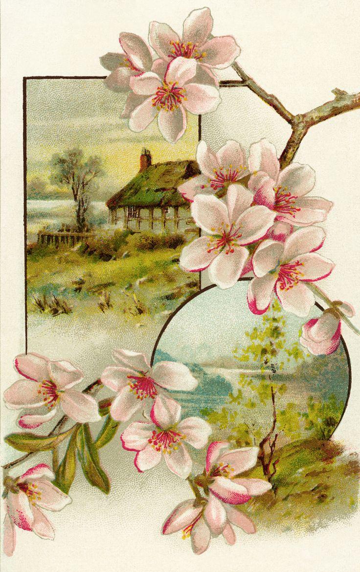 victorian cards | FREE Digital Image ~ Victorian Trade Card | Old Design Shop Blog