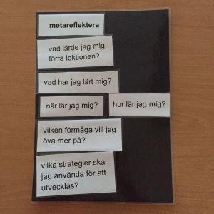 metareflektera