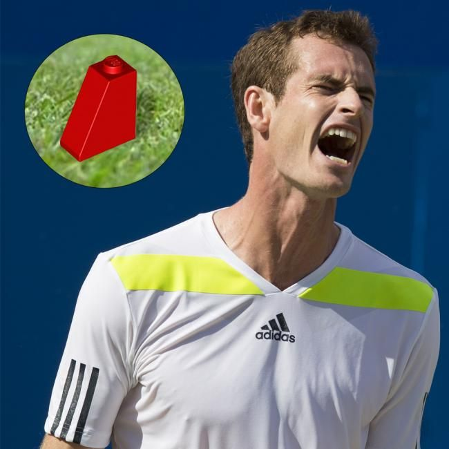 13 pictures of Andy Murray stepping on lego