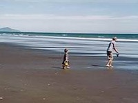 Google Image Result for http://203.86.194.7/Sites/redwood/images/waitarere-beach.jpg