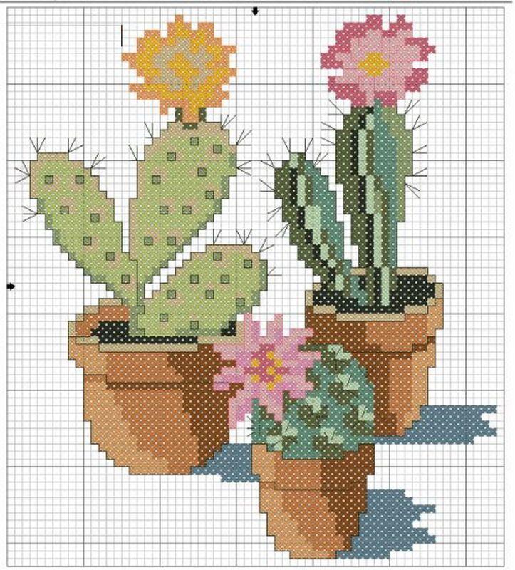 schemi_misti/fiori/cactus-1.jpg