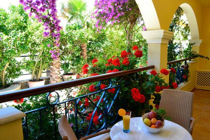 Garden view suite.. #Delfinoblu