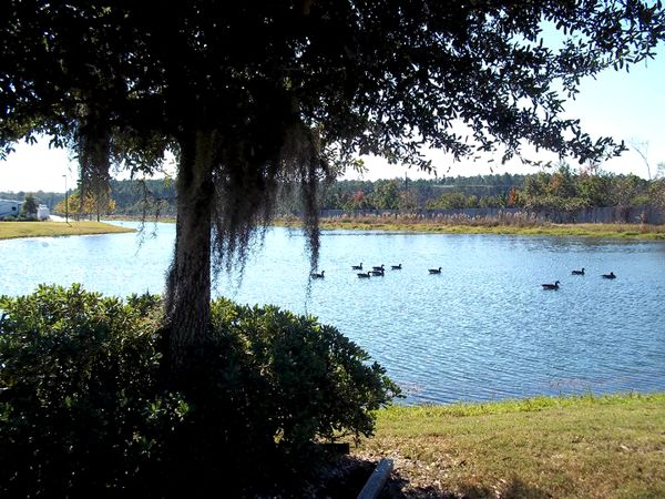 Pecan Park RV Resort at Jacksonville, Florida