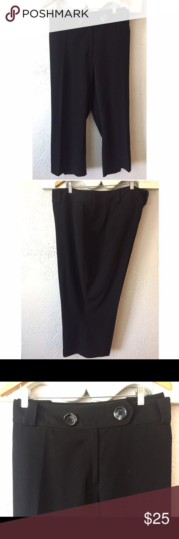 Plus size black crop pants size 28 lane Bryant These black crop pants have been worn very little.  Size 28 from Lane Bryant. 63% polyester 33% rayon and 4% spandex. Machine wash cold/tumble dry low or hang to dry. From smoke free home. Lane Bryant Pants Ankle & Cropped