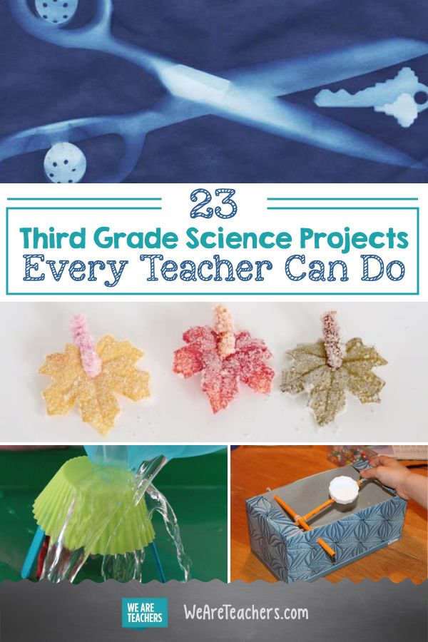 40 Hands On Third Grade Science Activities Third Grade Science Projects Science Experiments Kids Elementary Third Grade Science Activities