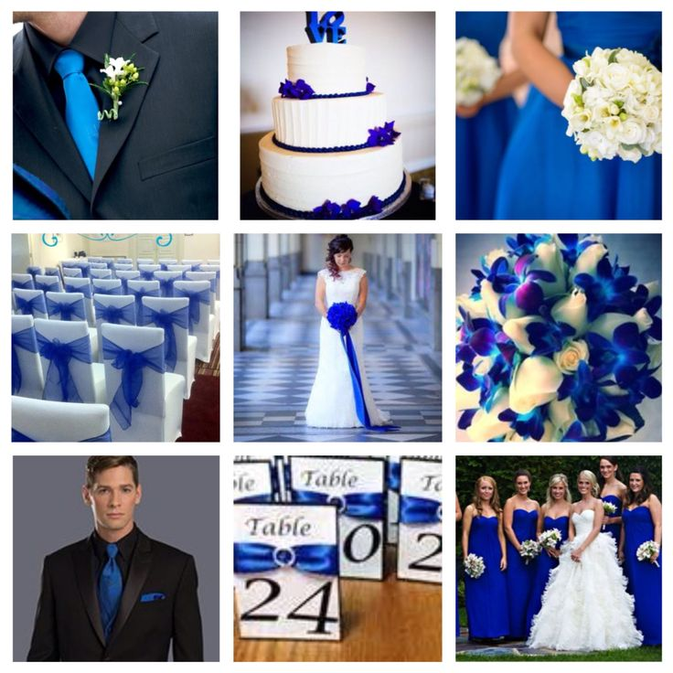 Dark/royal/electric blue wedding theme