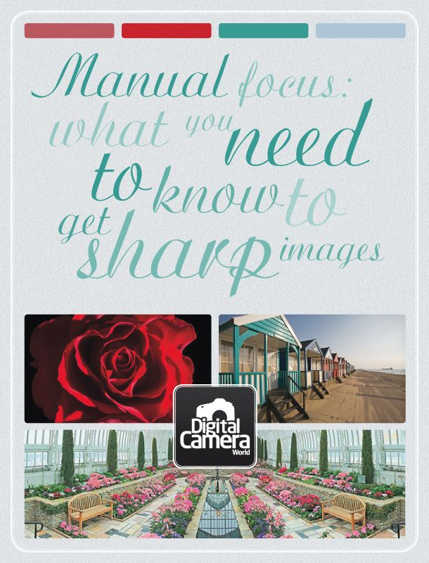 Manual focus: what you need to know to get sharp images