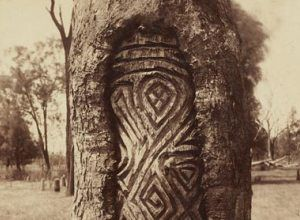 Image from http://liverpoolmuseum.com.au/images/Exhibitions/CarvedTrees/CarvedTrees.jpg.