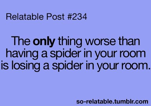 I laugh at this now, but the next time I see a spider, this will be running through my head...