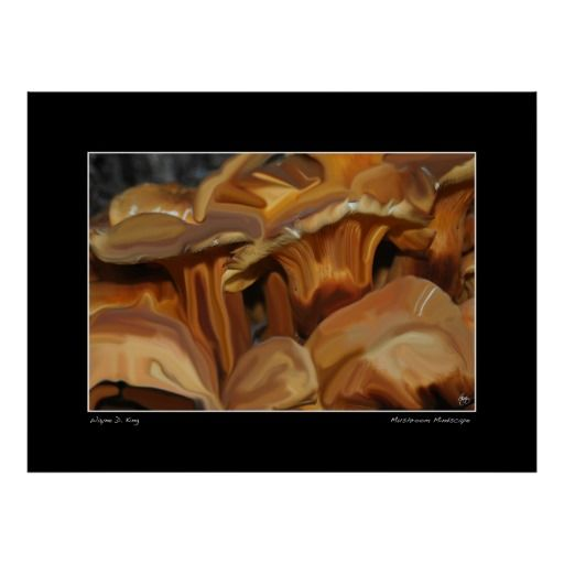 Manipulated abstract color image of Oyster Mushrooms. Only one original of this image is created, signed, dated and with a certificate of authenticity. The image is used for creation of an open edition but otherwise archived and kept only for historic purposes and publications. To purchase an original contact the artist at waynedking9278@gmail.com. Open edition fine art prints can be purchased ...