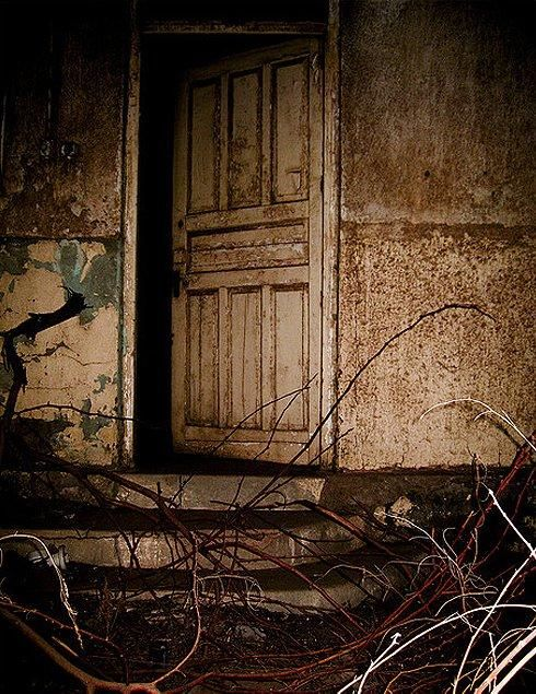 17 best images about haunted house hospital on pinterest for Back door with window that opens
