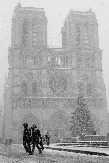 Snowing at notre Dame, Paris
